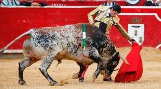 Presentada la feria taurina de Ajalvir 2019, primera de la temporada española